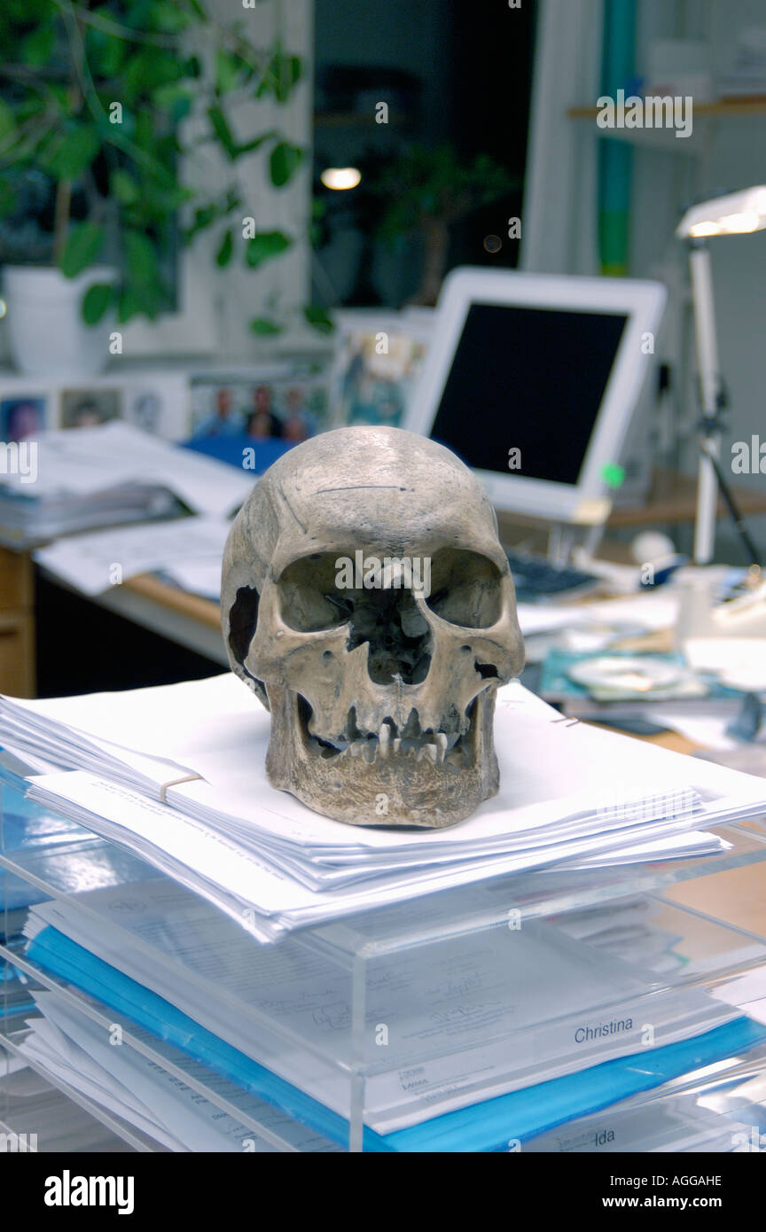 human scull of a murder victim on pile of documents (unsolved murders) in a forensic laboratory/department - Stock Image