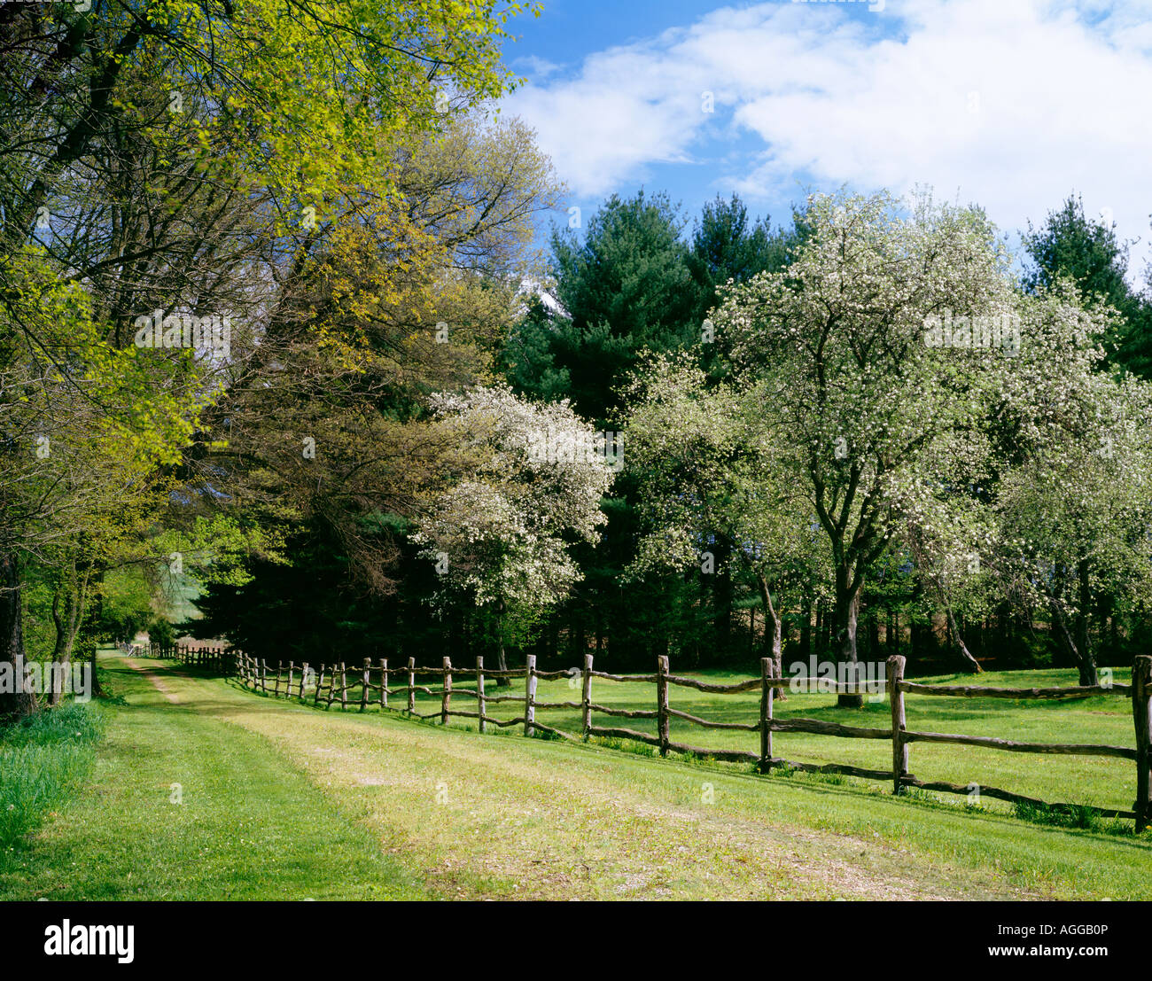 ROLLING ROCK GAME PRESERVE; OWNED BY MELLON FAMILY OF PITTSBURGH, WESTMORELAND COUNTY, PENNSYLVANIA, USA - Stock Image