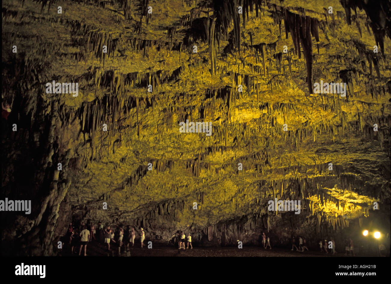 Drogorati Cave est150 million years Over 500 people can fit into this cavern Kefallonia Ionian Islands Greece Europe - Stock Image