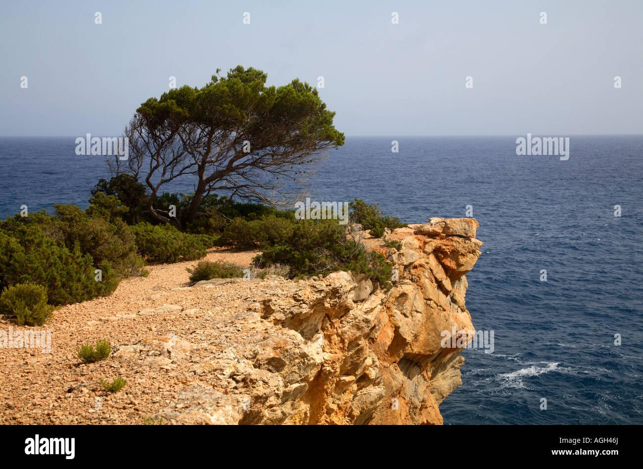 Coast at Can Jordi, Ibiza, Spain - Stock Image