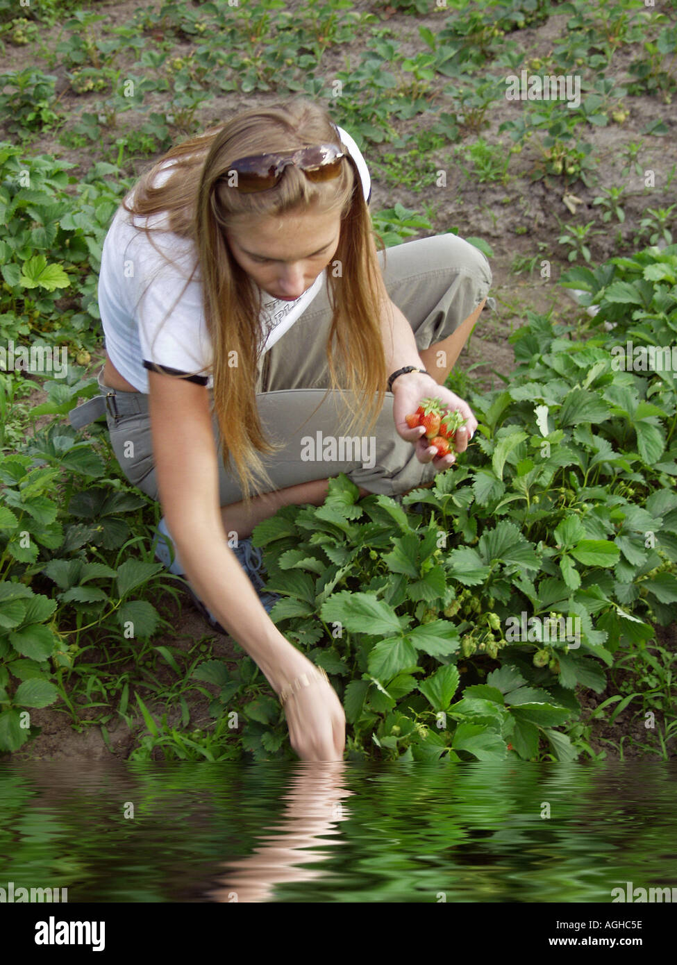 Woman age 27 crouching beside a country stream while holding freshly picked strawberries in one hand and fingers of her other hand in the water - Stock Image