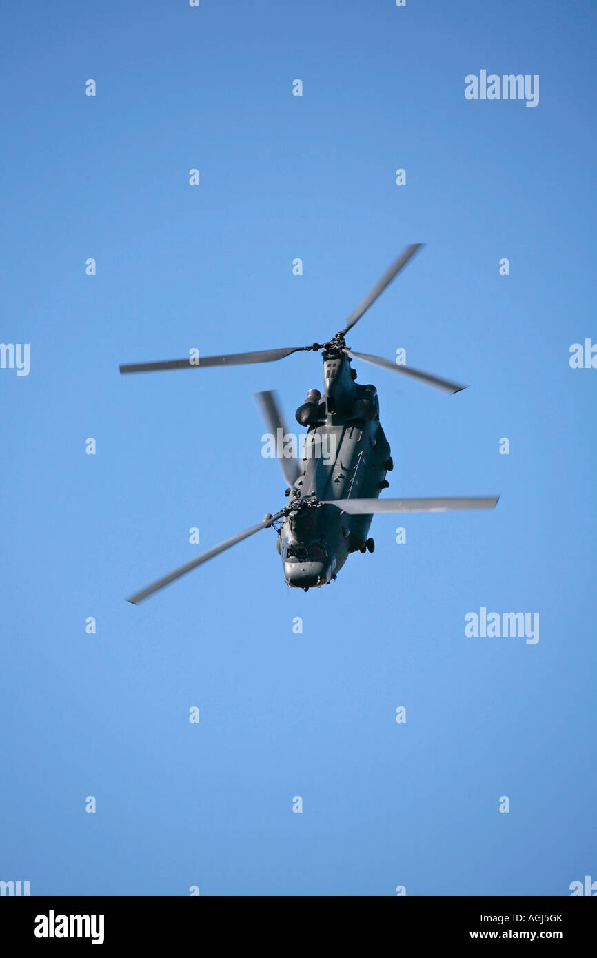 Chinook HC MK 11 performing aerial manoeuvre at air show - Stock Image