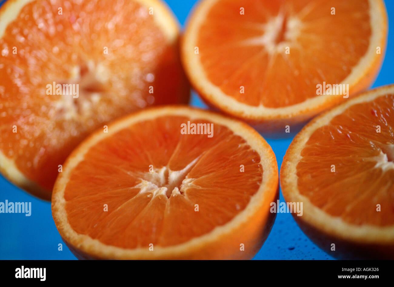 Blood Oranges Citrus spec Blutorangen Rautengewaechse Rutaceae innen Studio indoor Stock Photo
