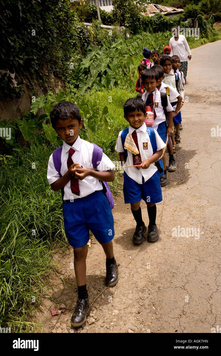 School boy in the queue on the road - Stock Image