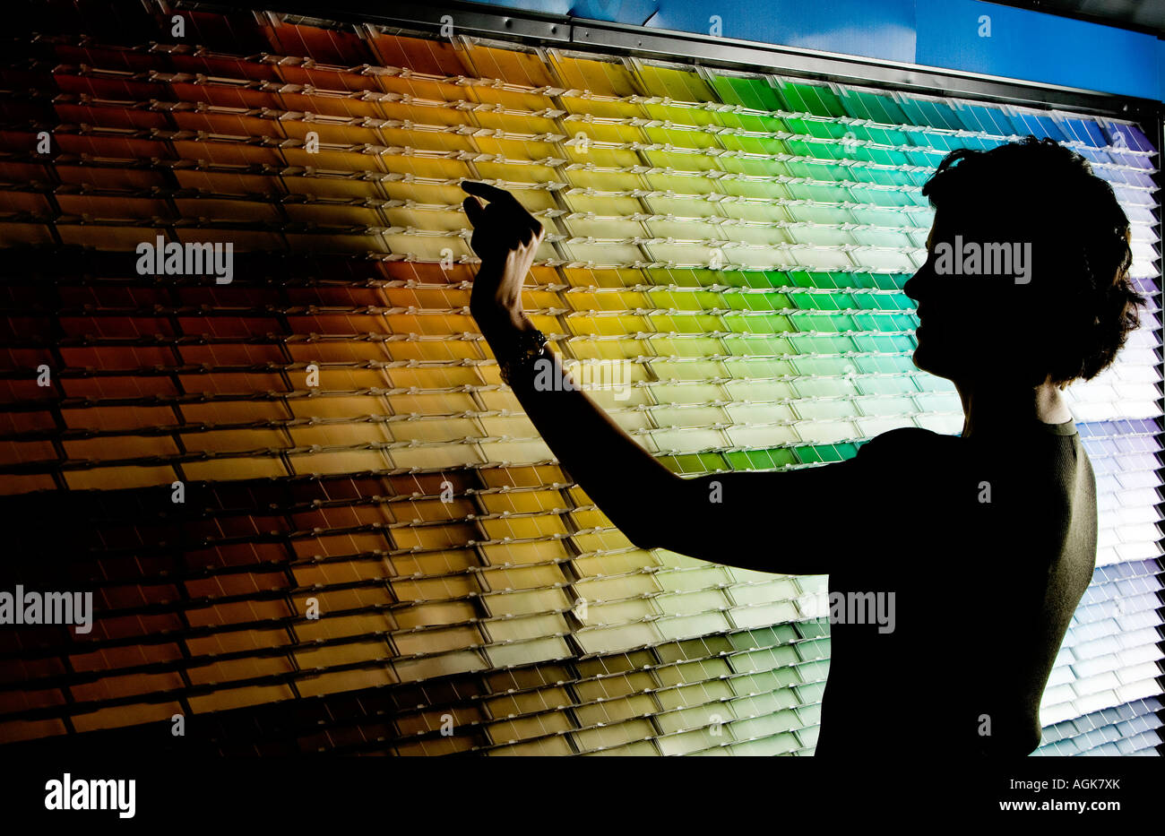 Female Homeowner Selects Paint Samples From A Paint Store Color