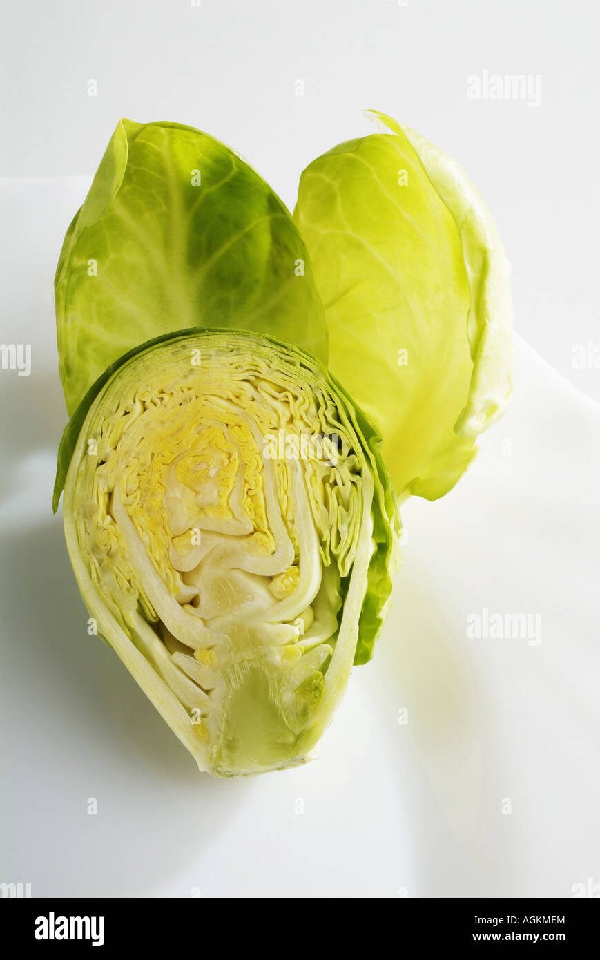 Painet jn0906 brussels cabbage isolate background broccoli brussel closeup cook cooking diet eat food fresh green - Stock Image