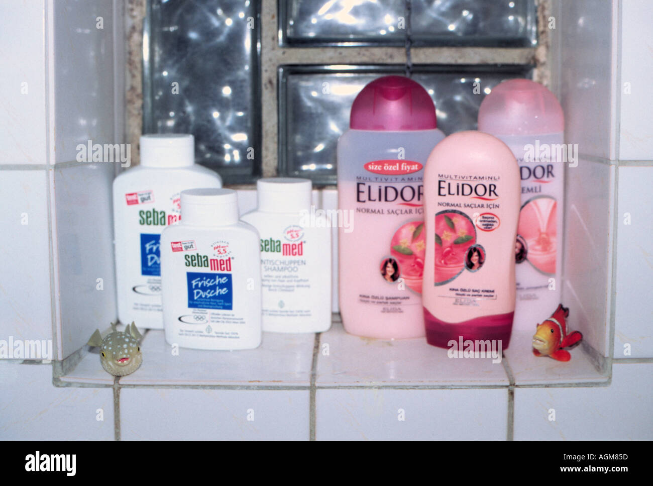 Three german and three turkish shower gels and shampoos side by side in a bathroom  Stock Photo
