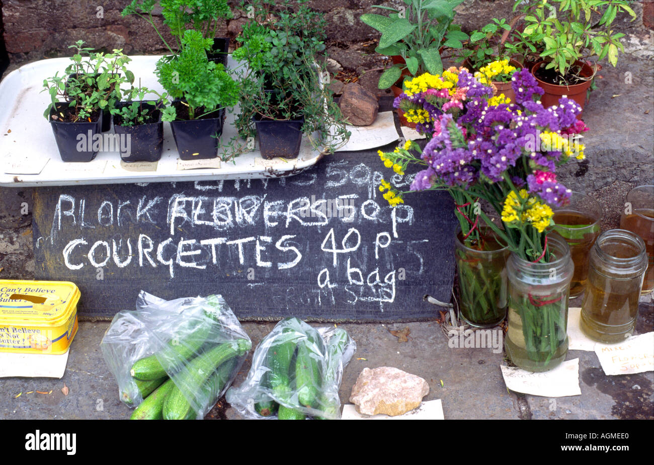 Flowers courgettes and herbs along with other home produced goods for sale in Devon England - Stock Image