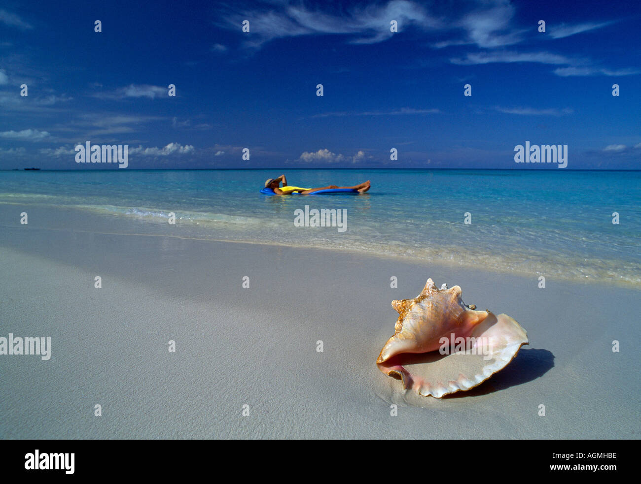 Grand Cayman 7 Mile Beach conch shell on sand girl on float swimmer in bkground - Stock Image