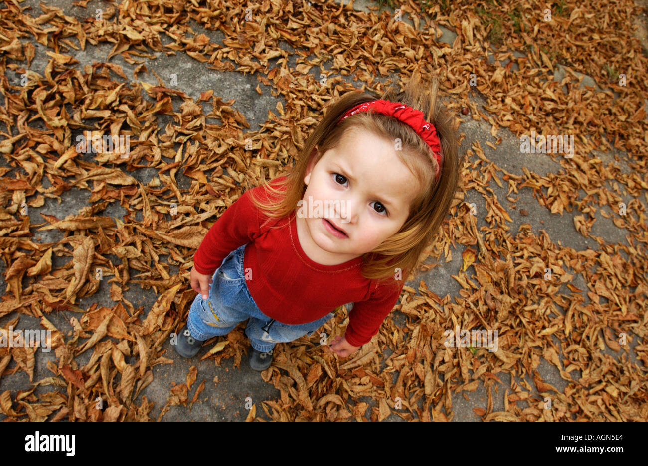 little girl looking at camera cute little girl wearing jeans and red
