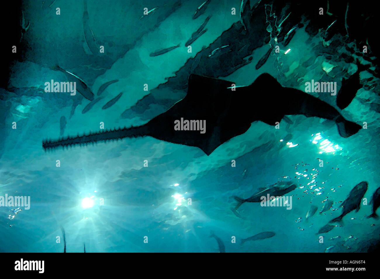 Sawfish: A Deep Sea Thriller