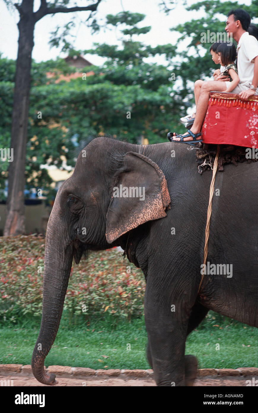 Cambodian father and children riding on an elephant at Wat Phnom Phnom Penh Cambodia Southeast Asia - Stock Image