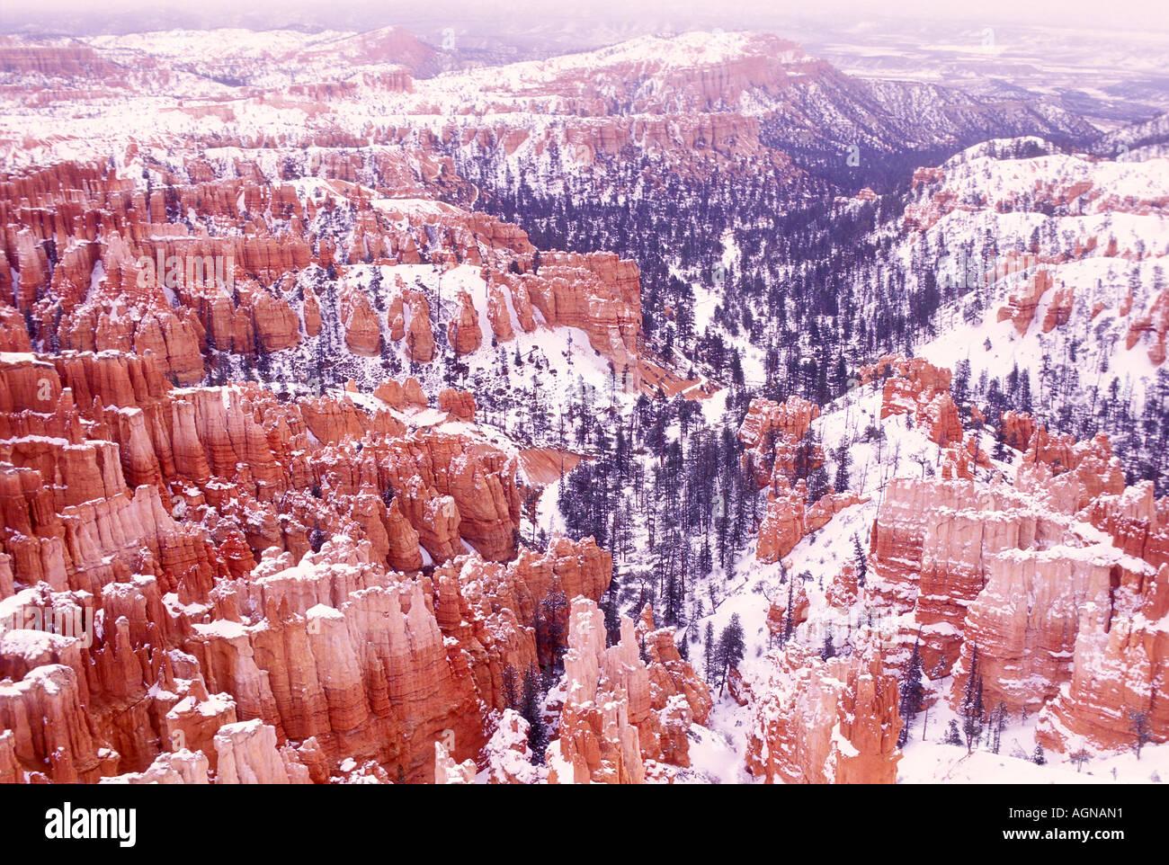 Bryce Canyon National Park Utah - Stock Image