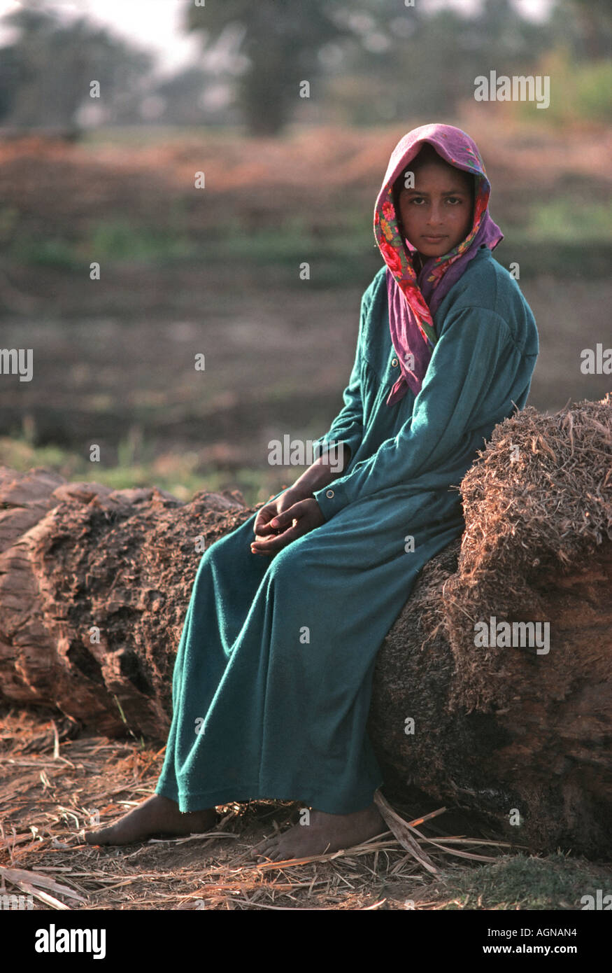 Egyptian girl seated on a log in a field on the bank of the River Nile at Thebes Luxor Egypt - Stock Image