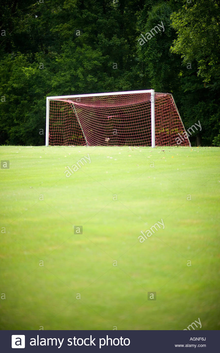 grass soccer field with goal. Soccer Goal On A Empty Field With Green Grass And Trees