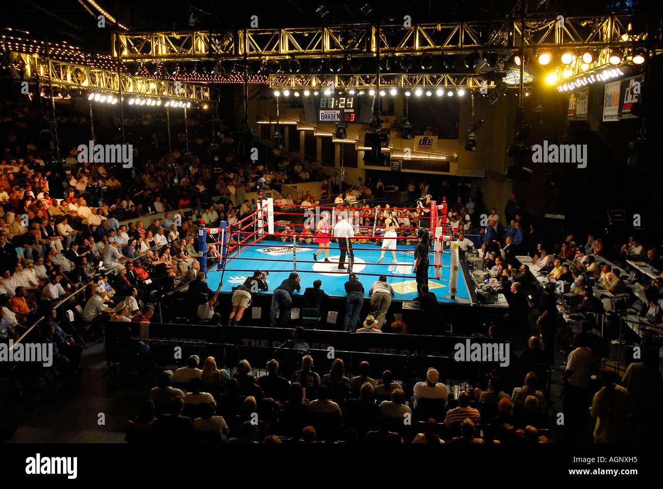 Madison Square Garden Boxing Calendar Garden Ftempo