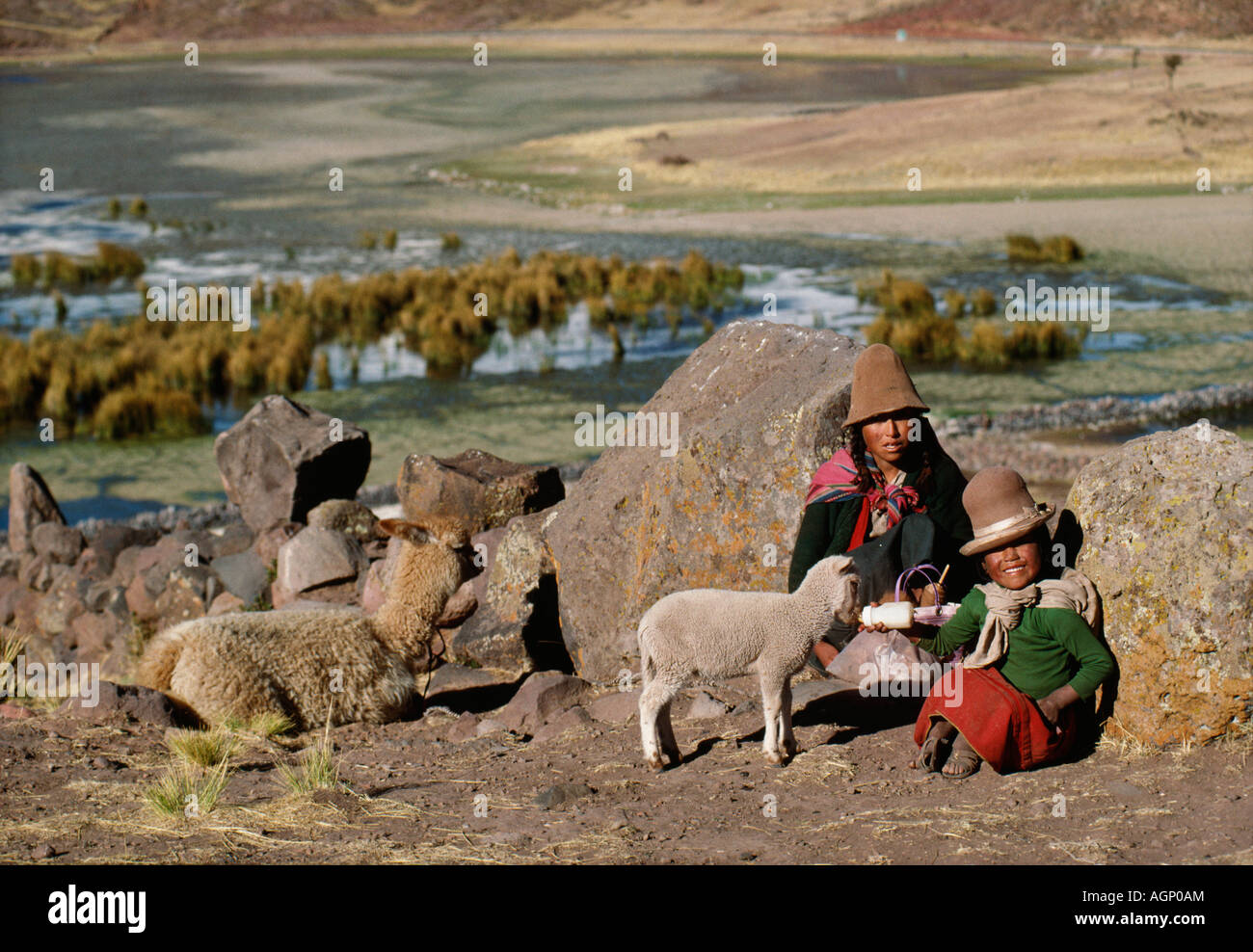 Peru, Titicaca lake, Tequile island, Indian daughter with mother feeding lamb - Stock Image