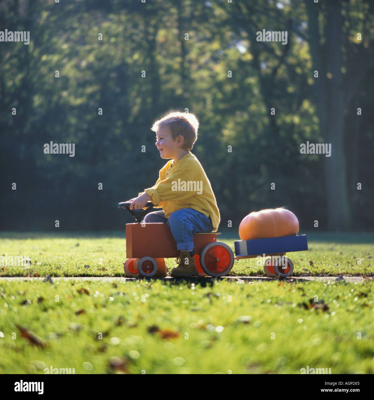boy transporting a pumpkin - Stock Image