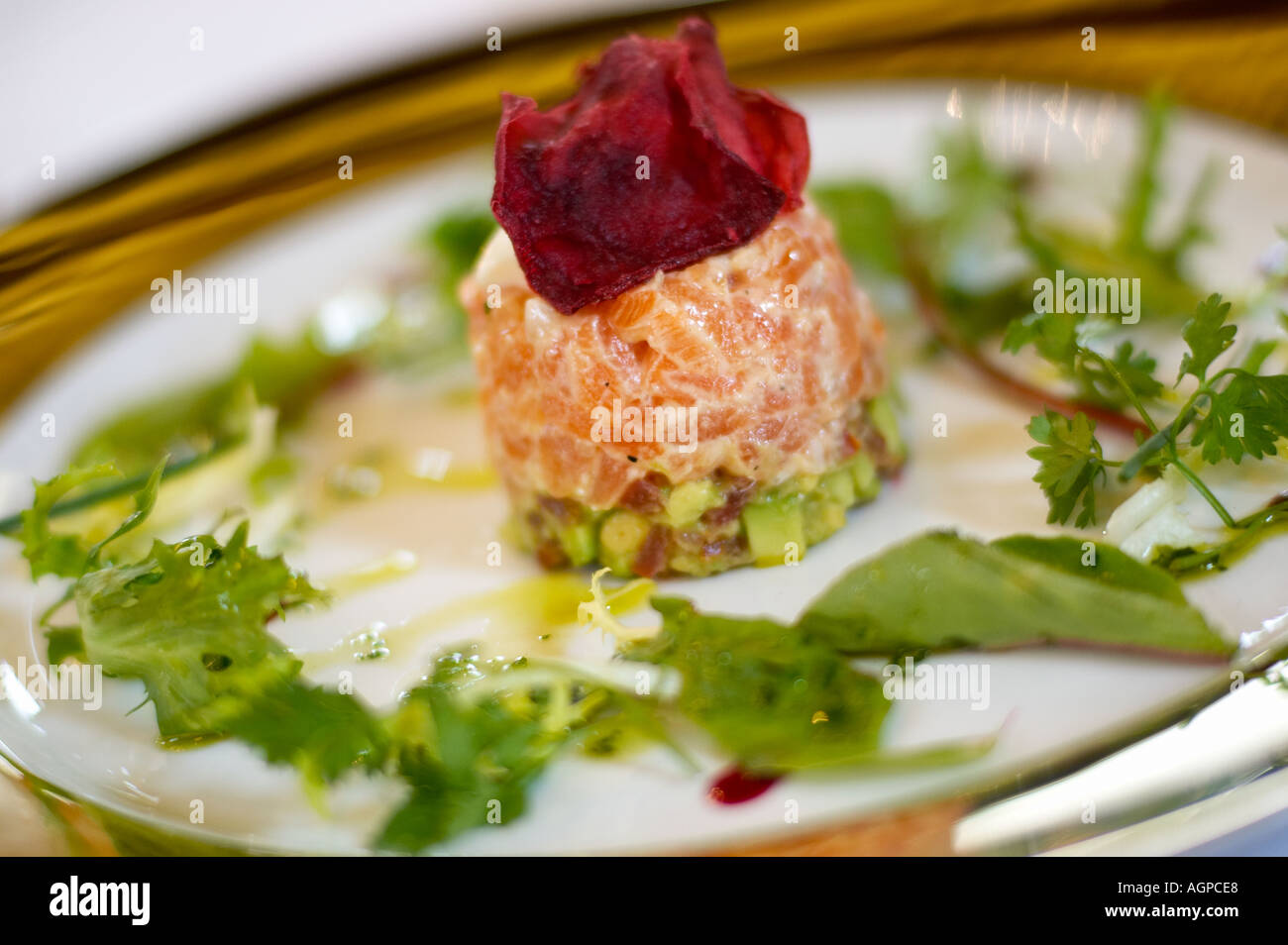 Fine dining - salmon terrine starter on a white plate with gold rim - Stock Image