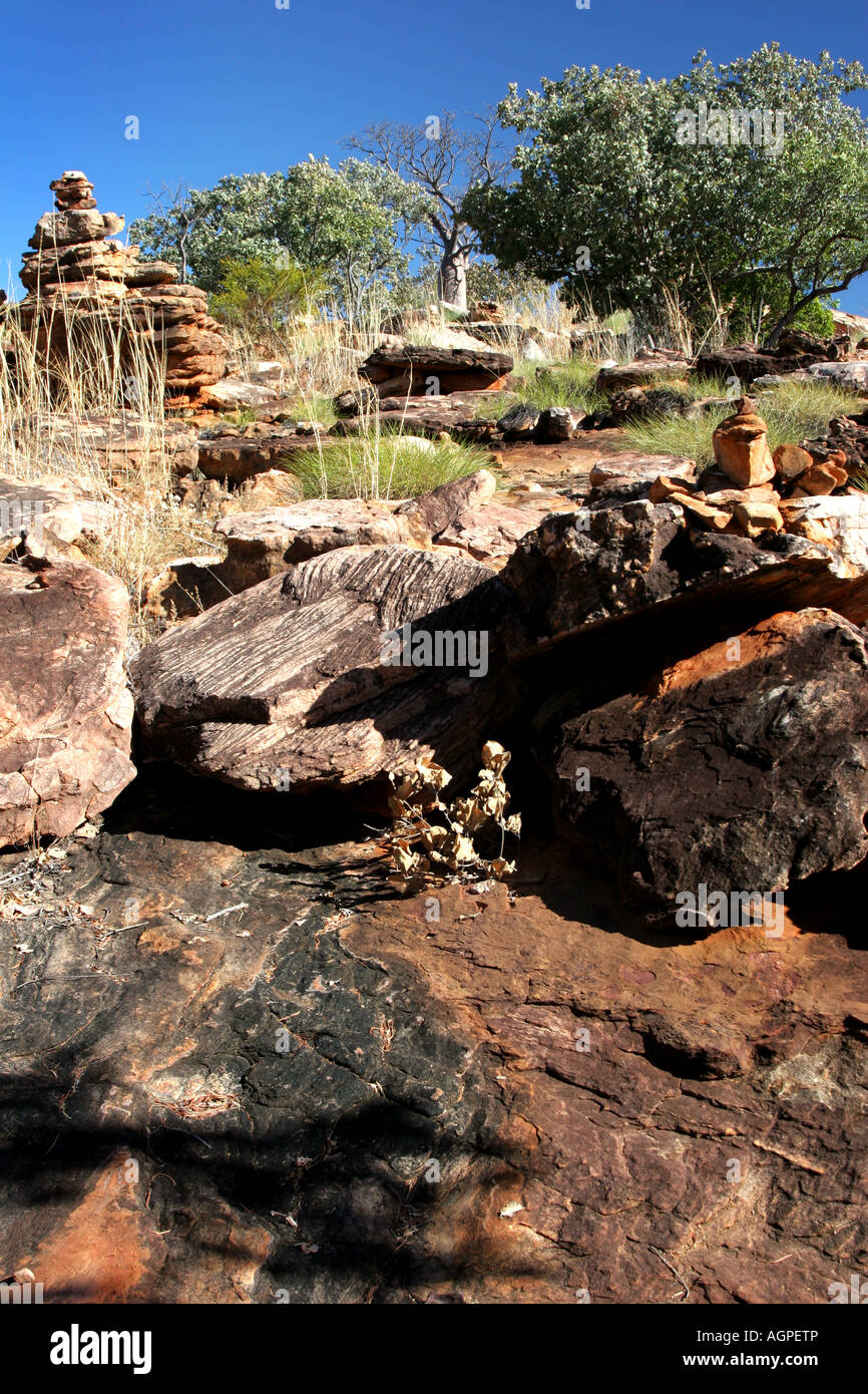 Sandstone, Spinifex grass and Boab tree landscape, Manning Gorge Falls, Outback Western Australia - Stock Image
