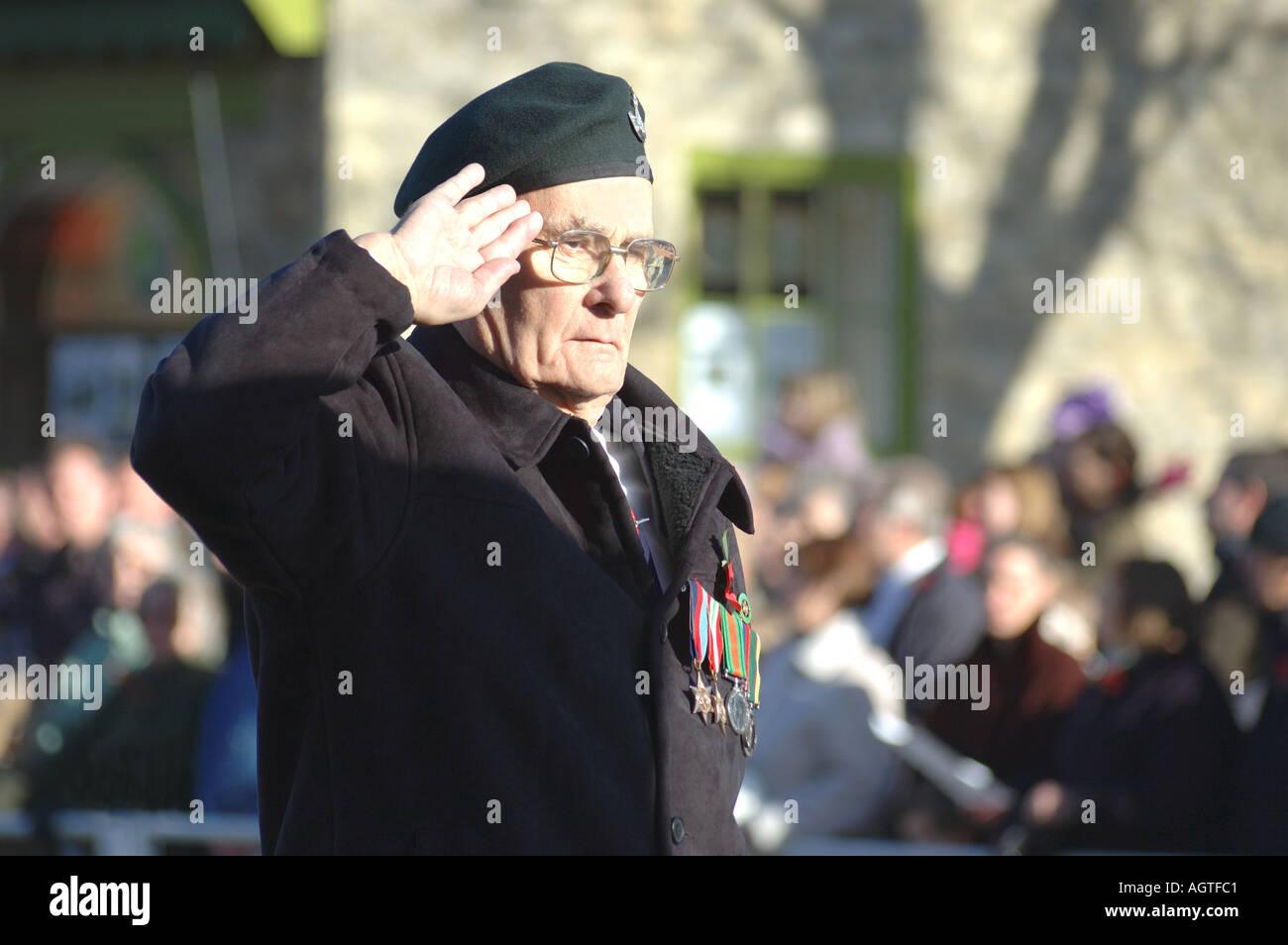 Veteran saluting on Remembrance Sunday - Stock Image