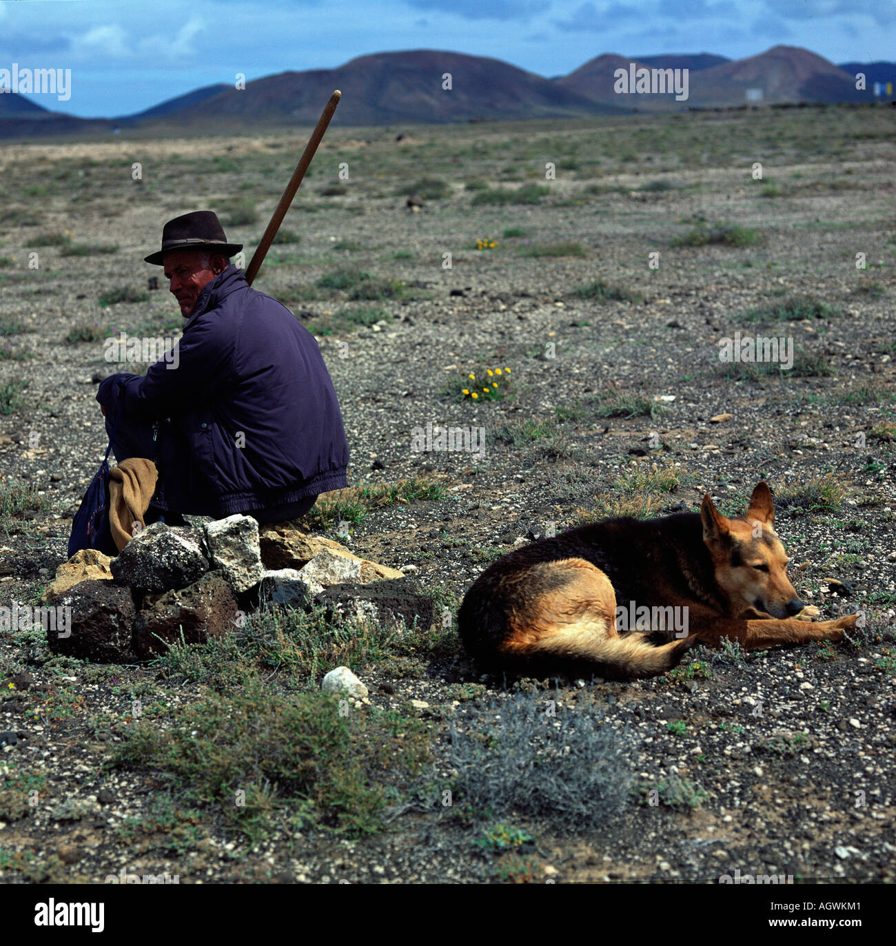 Herdsman with dog / Hirte mit Hund - Stock Image