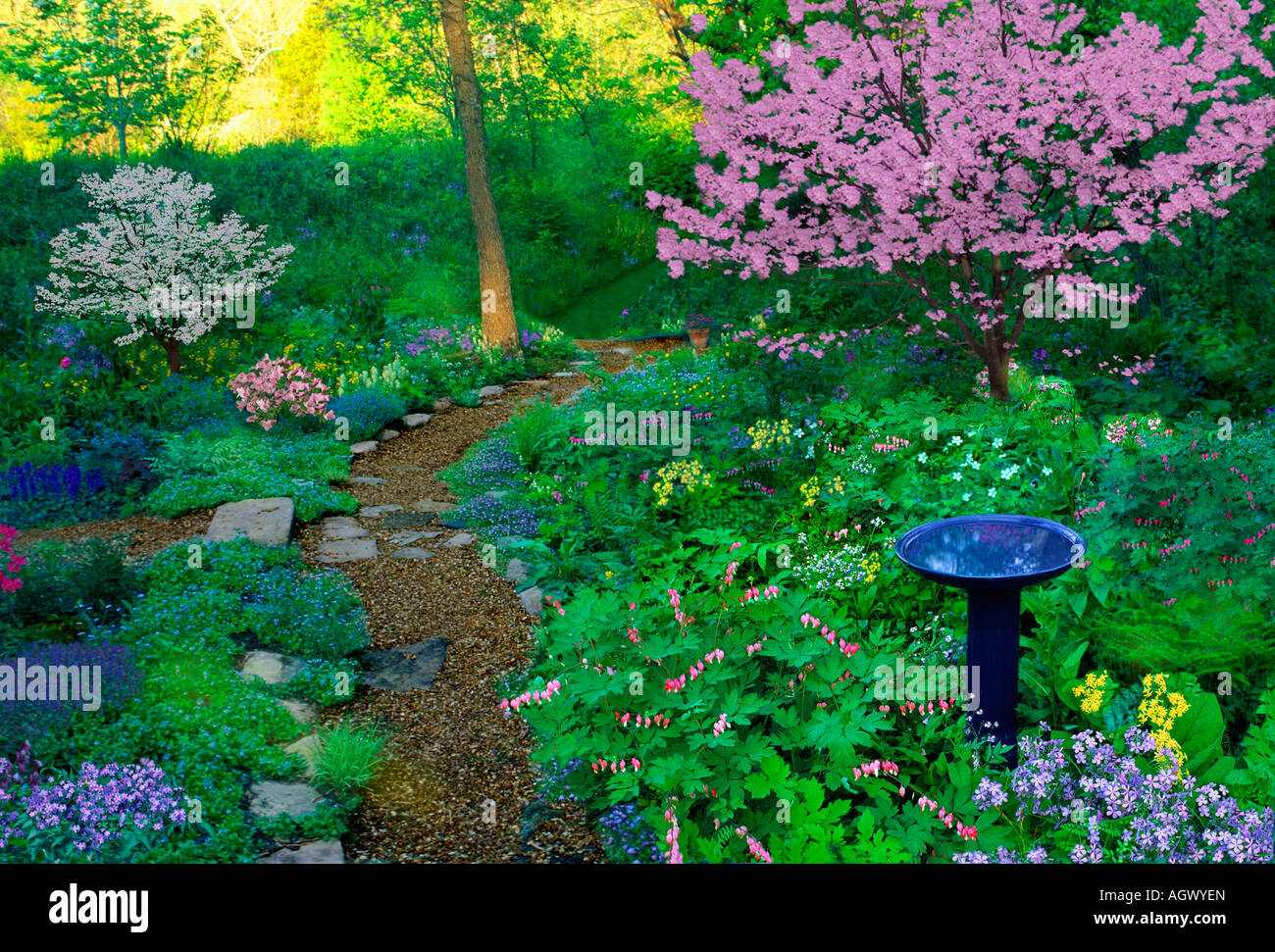 Aggregate Path Curves In Spring Shade Garden With Bird Bath And Many  Blooming Flowers And Pink And White Dogwood Trees