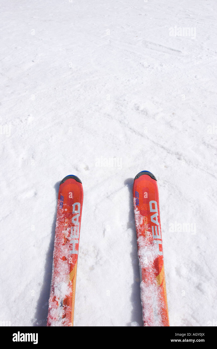 Ski boards on the snow close up (vertical). Negative space for copy. - Stock Image