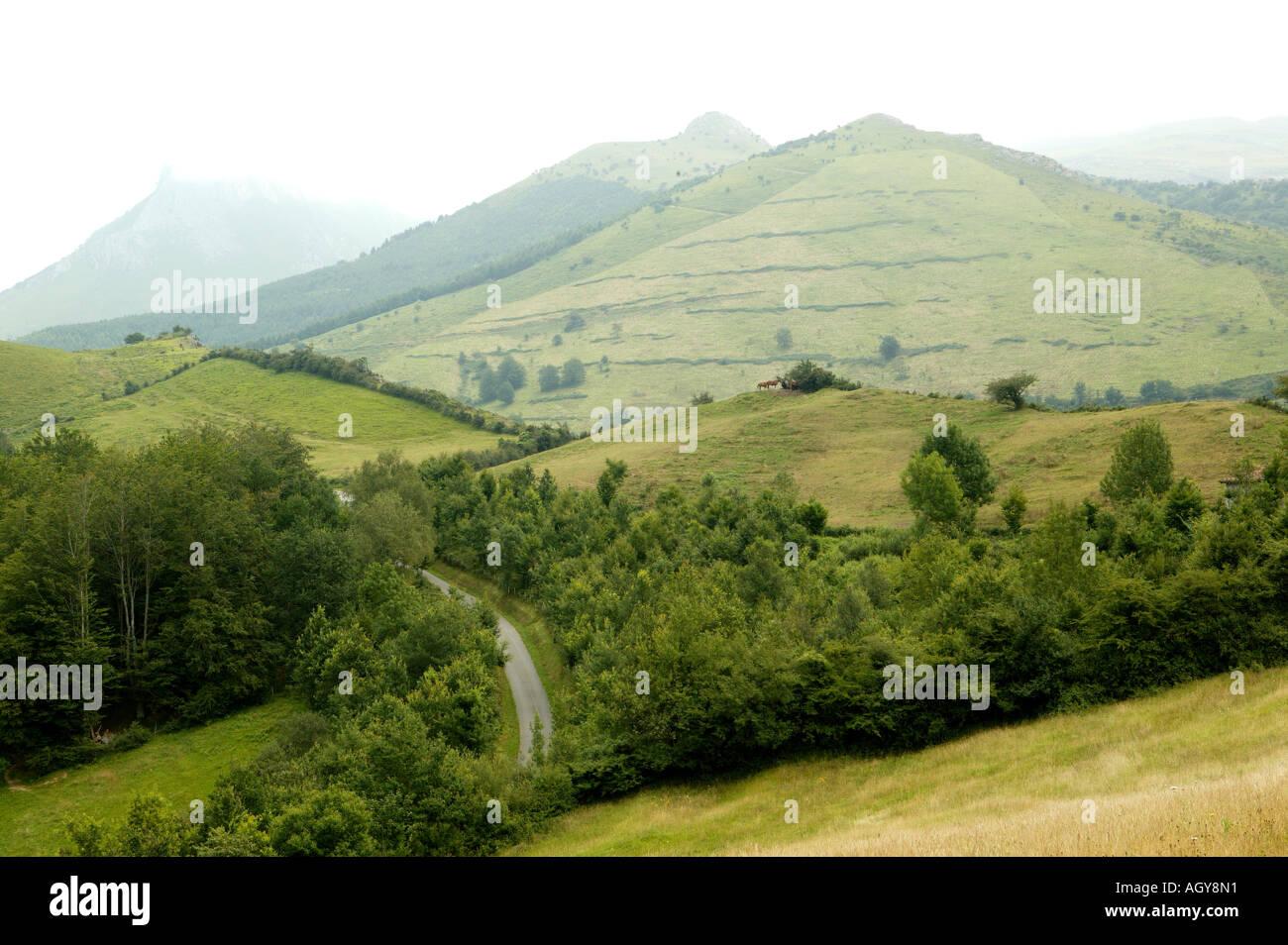 Lazkaumendi, Goierri, Guipuzkoa, Basque, Country, Spain, wild, mountain, tree, txindoki, chindoki - Stock Image