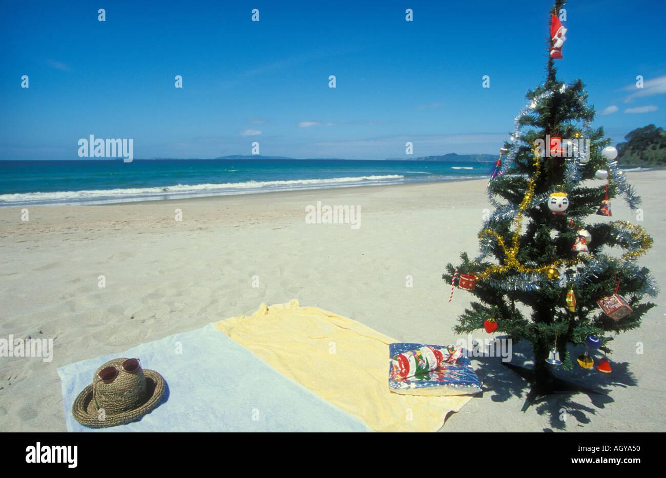 surreal kiwi christmas on the beach coromandel peninsula north island new zealand stock image