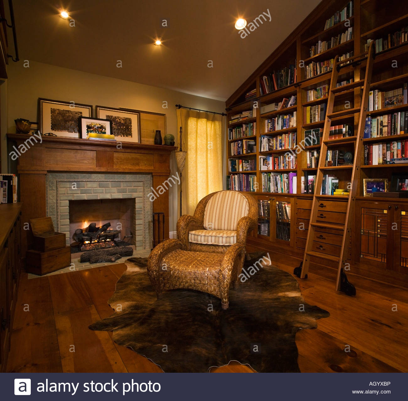Cozy Home Liry wiith Fireplace Stock Photo: 14312169 - Alamy Designs For Home Liry With Fire Place on