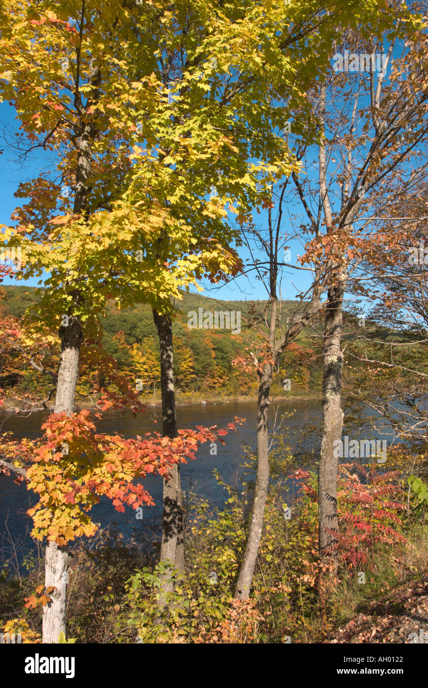 Fall Foliage by the Hudson River, Adirondack Mountains, New York State, USA - Stock Image