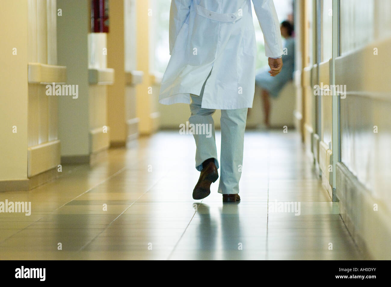 Male doctor walking in hospital corridor, cropped rear view - Stock Image