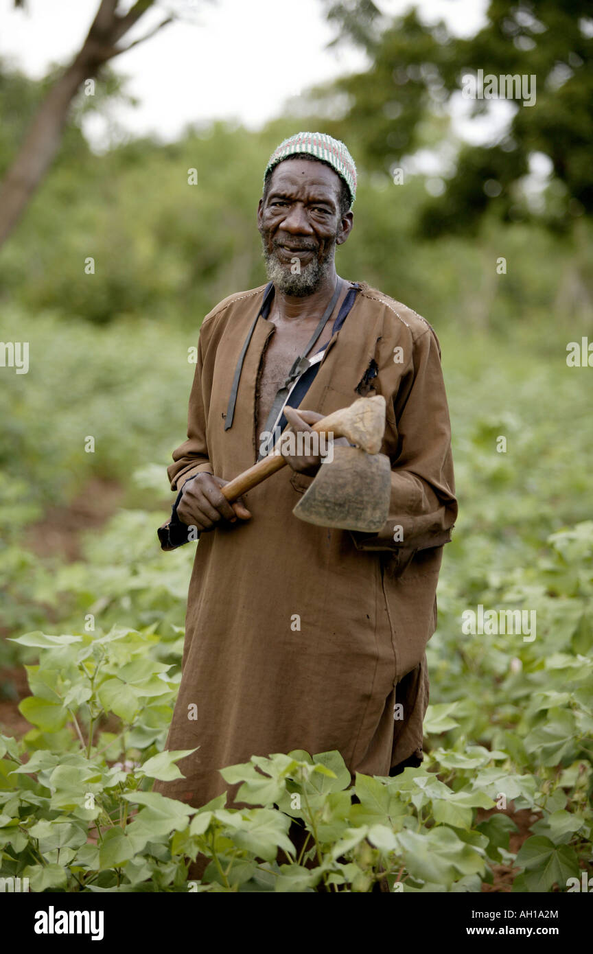 Organic Cotton field worker Mali Africa - Stock Image