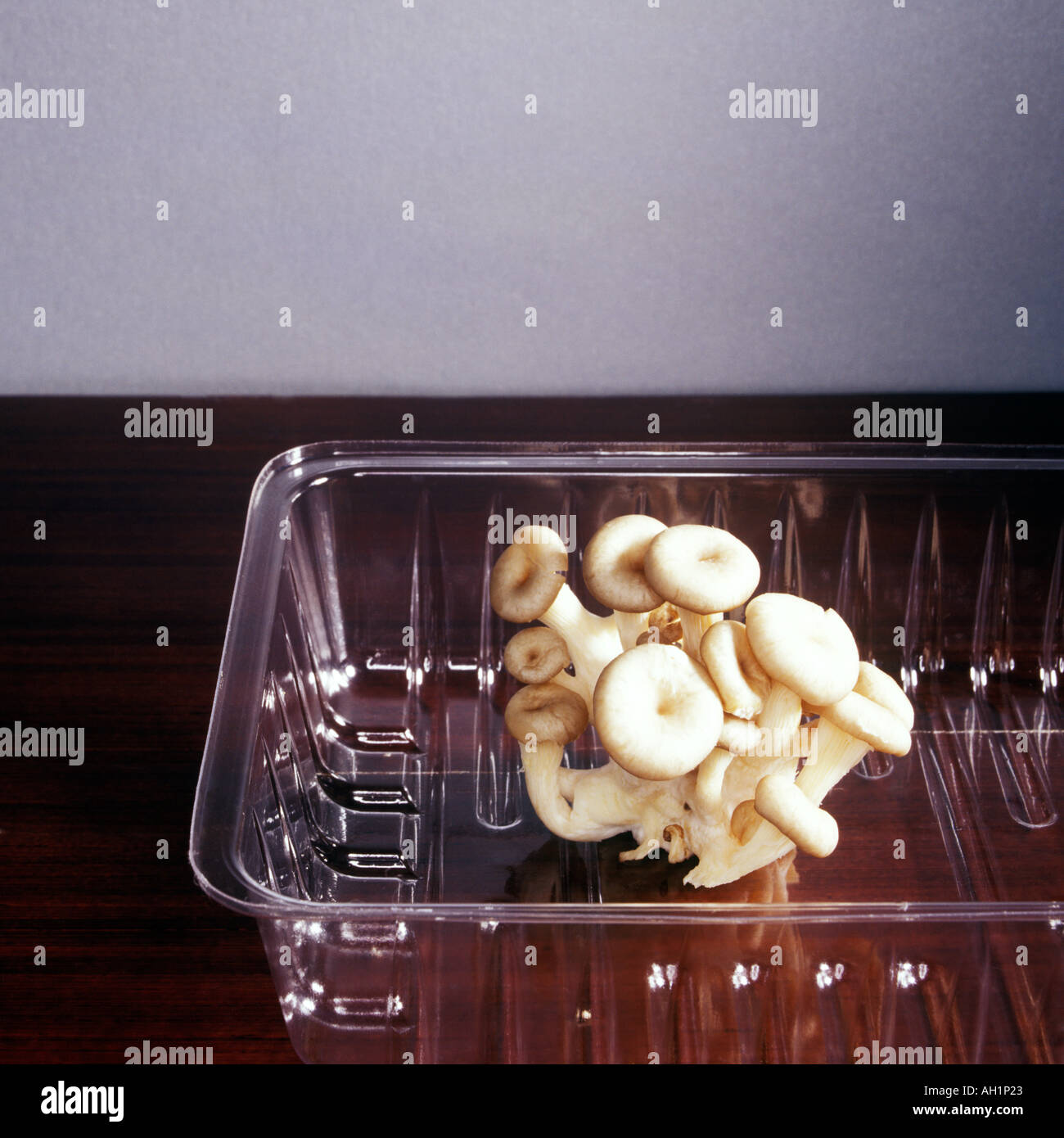 Many Shimeji Mushroom S In Clear Open Plastic Container On Dark
