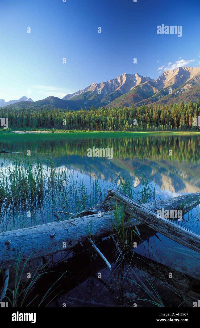 kootenay national provincial park bc image collections