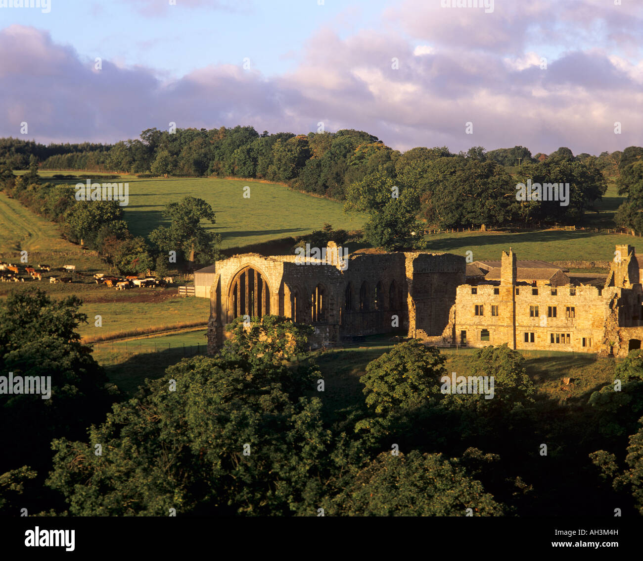 Egglestone Abbey in Teesdale, County Durham - Stock Image