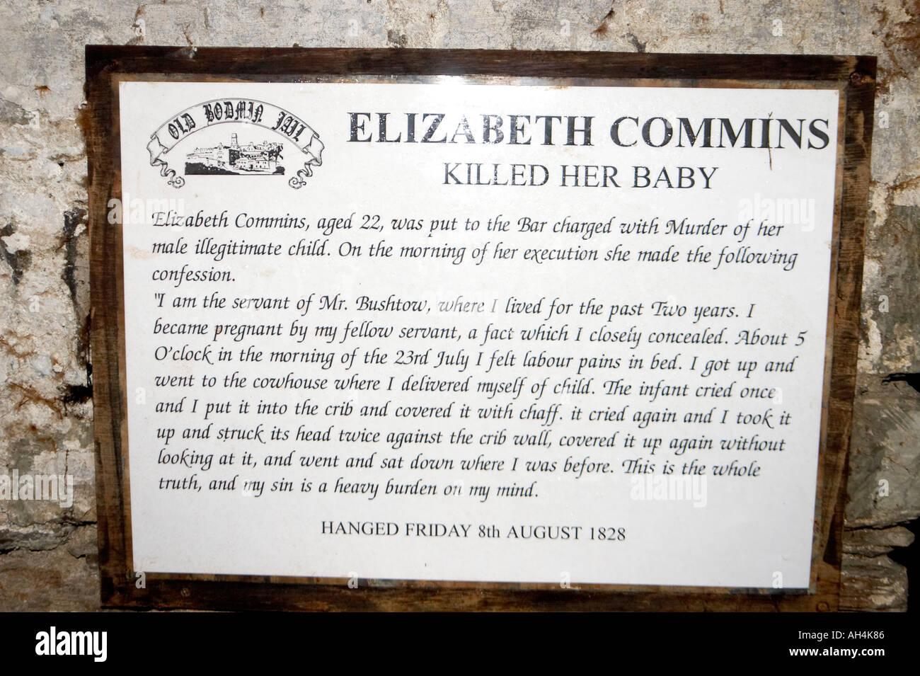 Display panel featuring Elizabeth Commins child murderer in