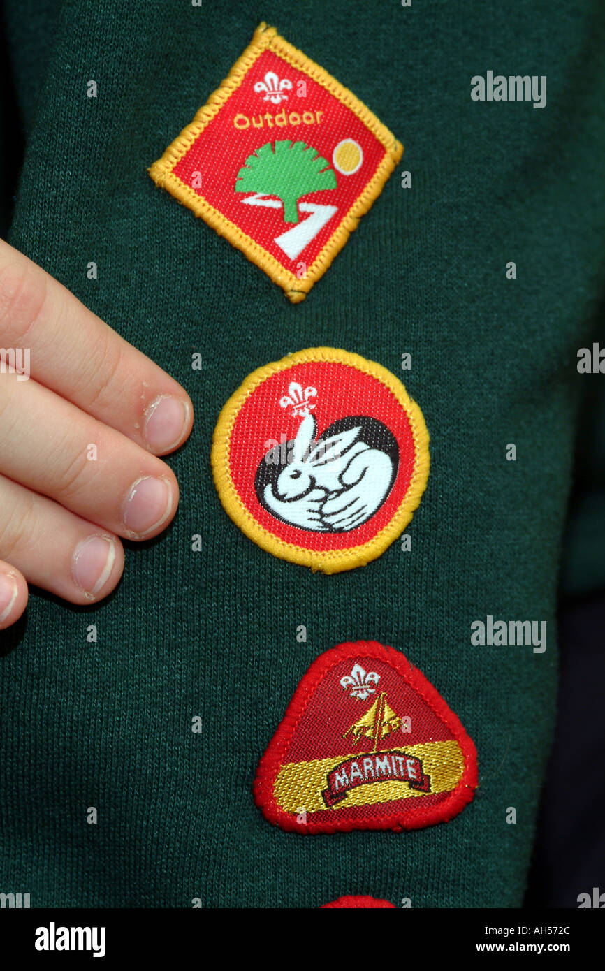 Scouting Movement Arm Badges for Animal Care Camping Outdoor Challenge England UK - Stock Image