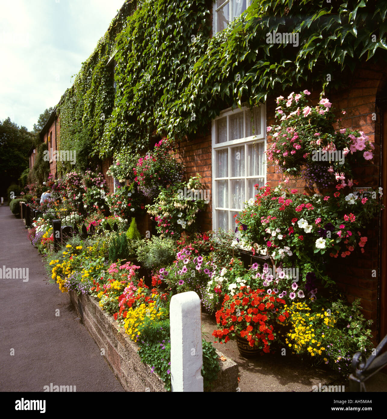 Cheshire Stockport Cheadle village floral front gardens in Lime ...