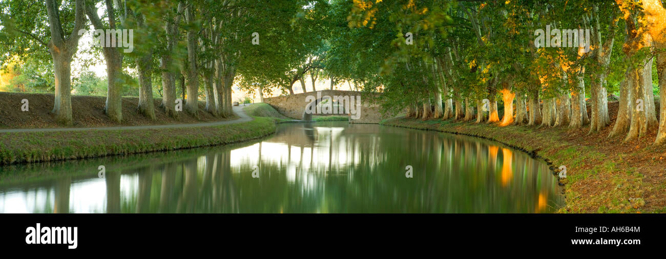 France Languedoc Roussillon Carcassonne Canal du midi - Stock Image