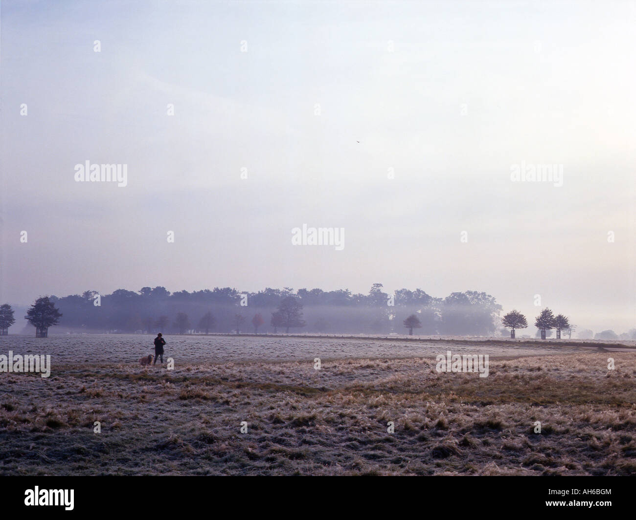 Lone figure with dog in a frosty landscape - Stock Image