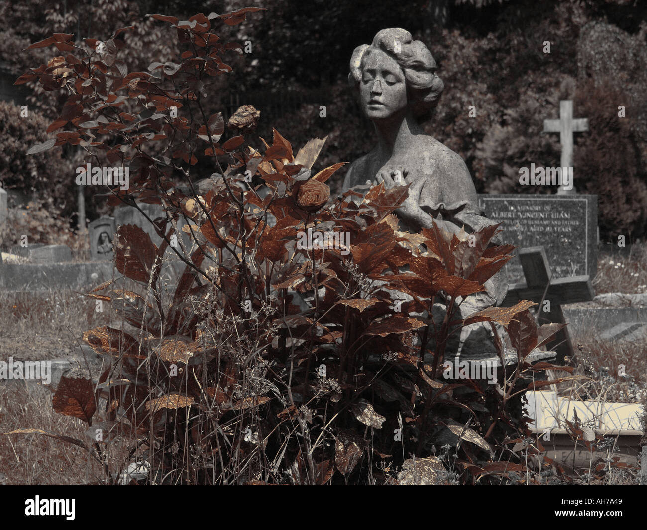 London Highgate cemetery - Stock Image