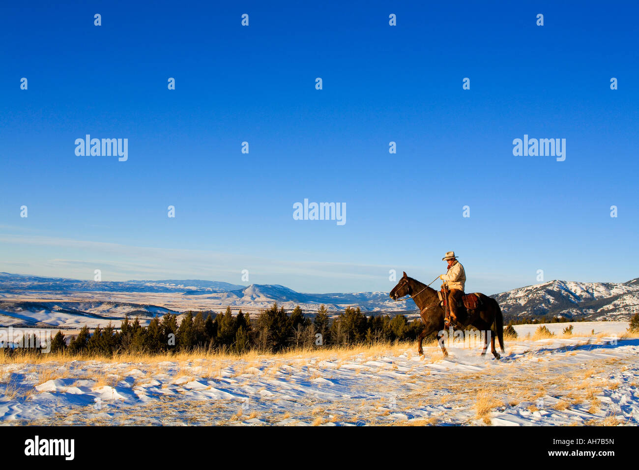 Mature man riding a horse in a snow covered field Stock Photo
