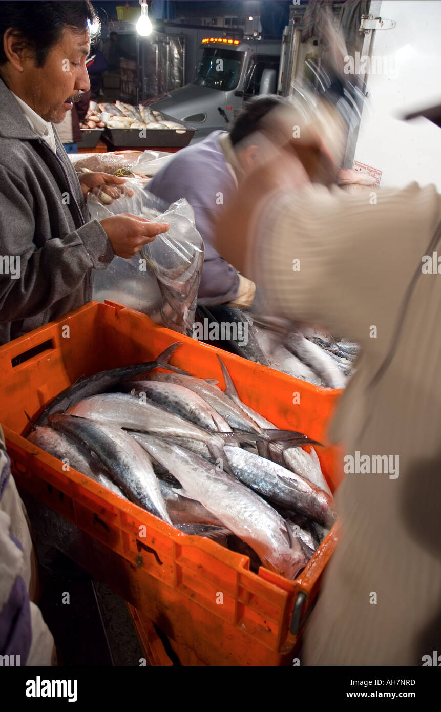 La Viga Mexico City s wholesale fish market Stock Photo: 8220476 - Alamy