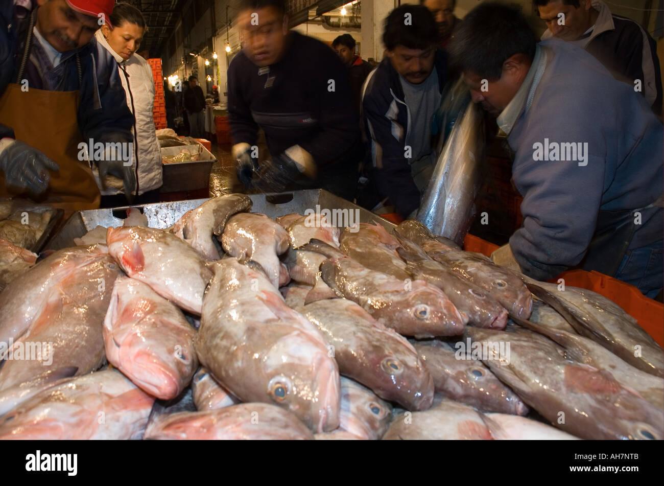 La Viga Mexico City s wholesale fish market Stock Photo: 8220490 - Alamy