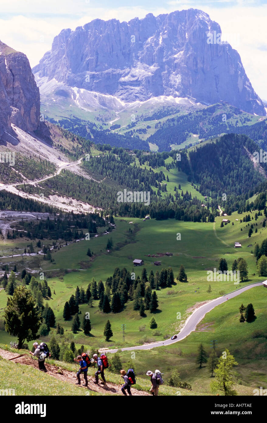 Hikers on Alta Via Dolomiti Via Ferrata trail and Gardena Pass below and Sassolungo range 3181m Dolomites Alto Adige Italy - Stock Image