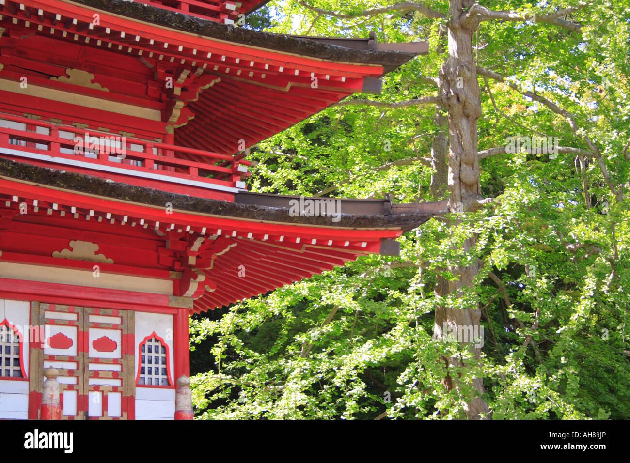 Japanese Tea Gardens, San Francisco Stock Photo