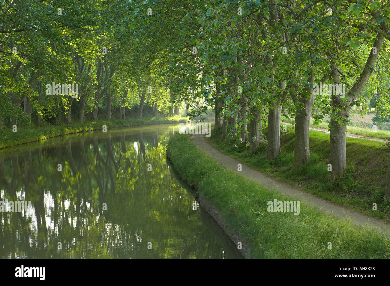 The tow path on the Canal du Midi near Carcassonne Languedoc France - Stock Image