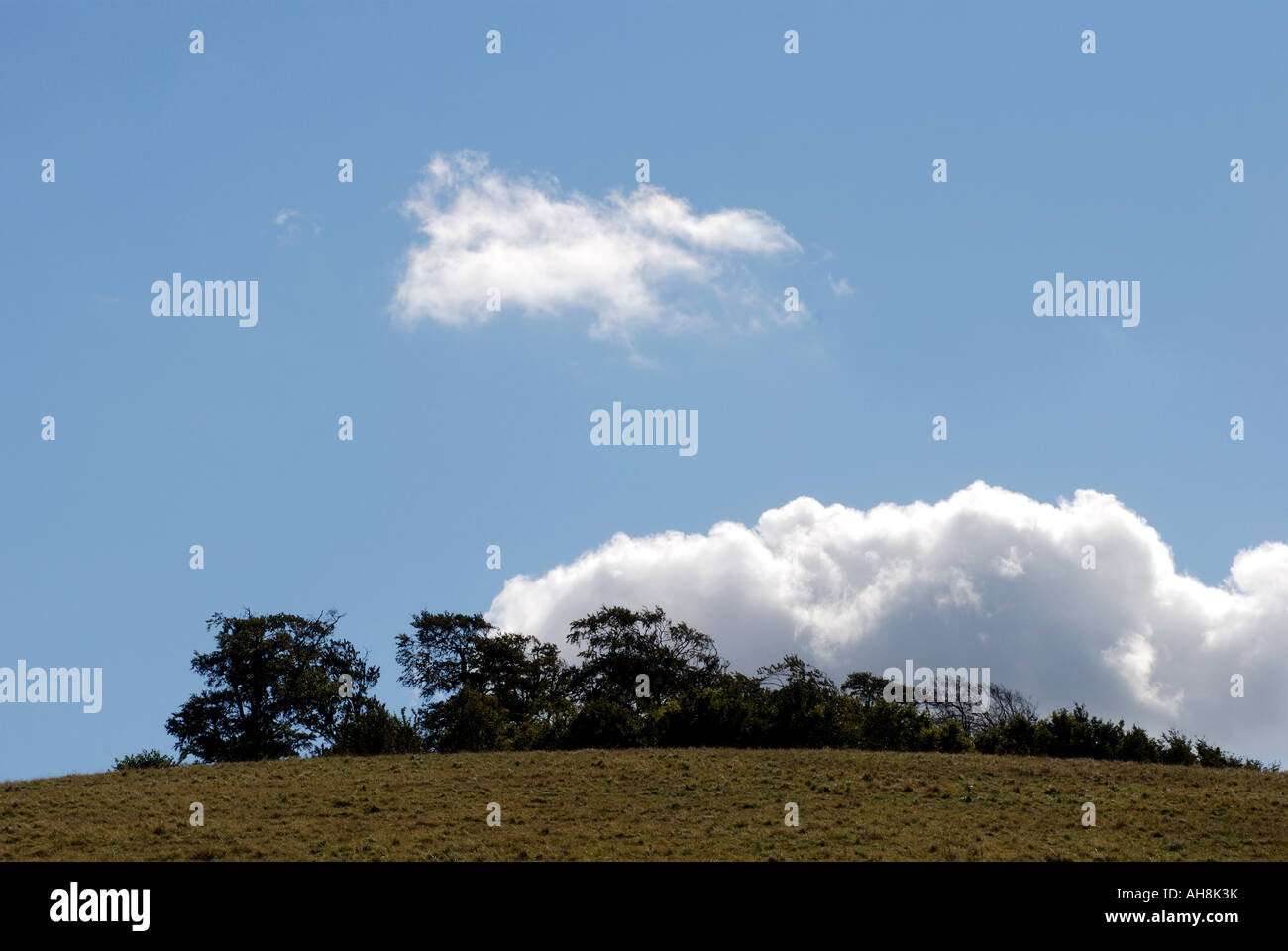Round Hill, Wittenham Clumps, Oxfordshire, England, UK - Stock Image